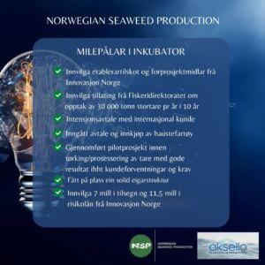Norwegian Seaweed Production-Aksello